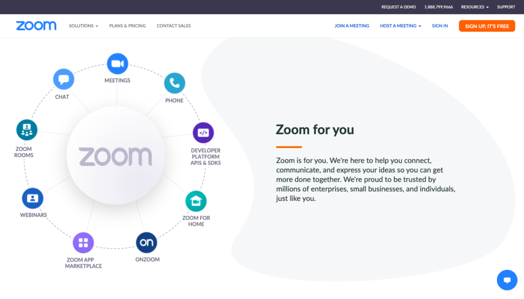 Zoom video software